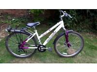 Raleigh trail lightweight mountain bike one of many quality bicycles for sale