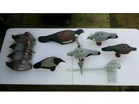Hunting shooting and fishing accessories ( lures line reels boots clothing decoys )
