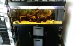 4 FT JEWEL RIO 240 LITRE FISHTANK IN BLACK WITH MATCHING CABINET