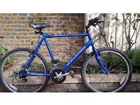 Raleigh Max 15 speed bike