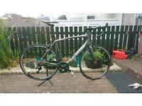 Specialized Roubaix SL4 Size 58