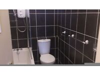 STUNNING 1 BEDROOM FLAT FOR RENT
