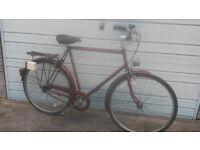MANS RALEIGH ROADSTER 3 SPEED BIKE- LARGE
