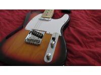 Sx hand built guitar.