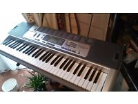 Casio Keyboard with Stand £70 ONO