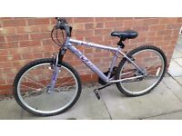 Ladies and Teen Girls Bikes for Sale