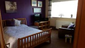 Large Double room with ensuite to rent