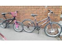 Junior girls bike