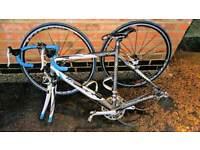 Road bike carbon fibre TELAIO