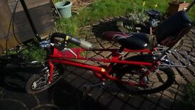 Raleigh Chopper (special edition the red one)