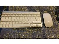 Apple Magic Mouse & Apple Magic Keyboard
