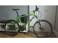 Ragley piglet mountain bike