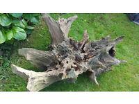 decorative large tree stump oak plant holder, local delivery