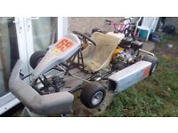 twin engine go kart with brand new engines