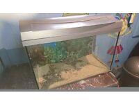 """22.5"""" long fish tank 14"""" deep"""
