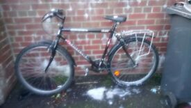 Meny cheap bike for sale