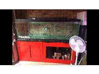 6ft fish Tank with stand