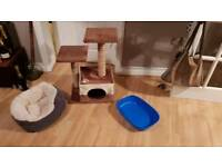 Kitten Scratching Post Tree, Litter Tray and Bed