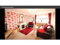 Lovely 2 bed flat with garden and garage - part furnished