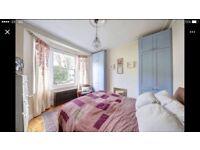 Double room in Earlsfield flat