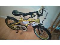 "children 's Raleigh bike 16"" wheels camouflage colours"