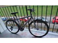 Male Trax bike