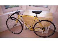 Adult Falcon Road Bike
