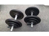 35KG cast iron dumbbells
