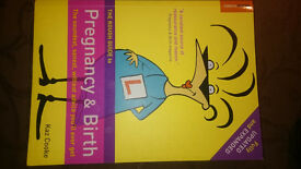Pregnancy book: The rough guide to pregnancy and birth