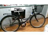 Bronx Savannah Ladies 3 Speed Town Bike