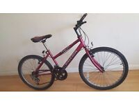 Raleigh Max girls ladies Mountain Bike Mountain Bike. 10 speed. (Suit: 13 yrs to Adult).