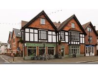 Cycle shop manager, Lyndhurst, The New forest