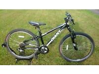YOUTHS / SMALL ADULT GIANT REVEL MOUNTAIN BIKE * FULLY SERVICED / IMMACULATE CONDITION *