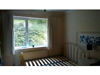 Double bedroom in two bedroom flat, rumney