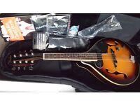 Fender Mandolin with pickup, volume/tone controls+gigbag+chordbook+strap+lead+picks+pipe+2xStrings
