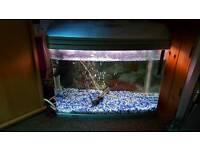 90 litres tank aquarium filter themometor gravel airstobe etc