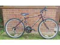 Raleigh small frame gents mountain bike.