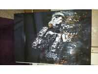 New Large star wars canvas picture abstract 20x40 inch