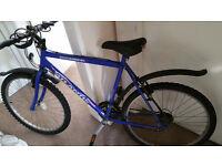 Used hybrid bike