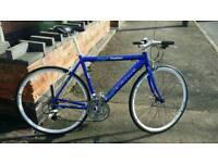 Carrera Gryphon light Road Bike