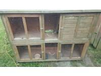 Double 4 door Rabbit hutch