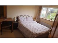 Large double-room for single, Headington, Oxford, £580/month including bills. Now. 07455531231