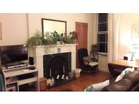 Comfy one-bed flat in central location available short term only