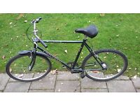 Universal Le Mans CityBike with low-maintenance 3-speed hub (very good)