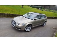 MINT: 2008 AUDI A3 TDI RARE Beige PANORAMIC ROOF why ASTRA POLO AURIS A4 Golf Passat Avensis