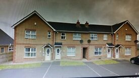 3 bedroom townhouse to let carn manor near summer meadows, blackthorn manor and crescent link