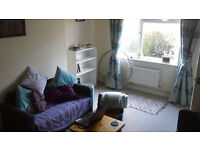 Medium double available in friendly vegan houseshare in Horfield. £400