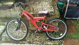 Mountain bike needs new chain