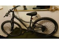 Ladies Mountain Bike, Trek Skye W (13.5), as new only used 4 times - from Alpine Bikes, Edinburgh