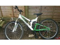 unisex bike for age 11 up over green and white